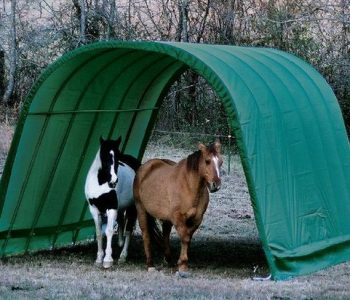 Best Portable Shelter for Horses