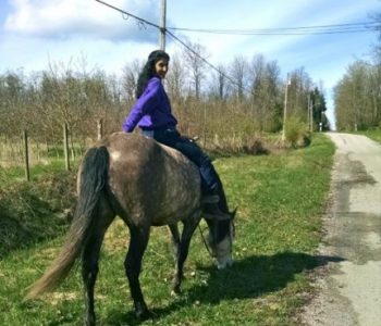 Healing Through Riding