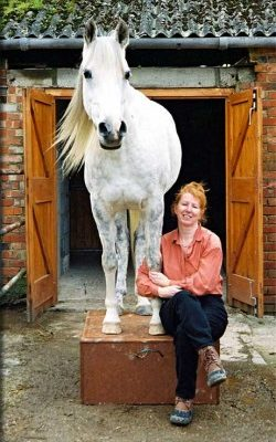 Horses As Pets – Why Not??