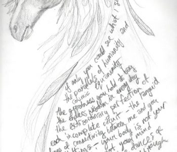 Writing With Horses