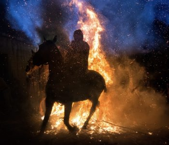 Horses, Chickens, Lizards and the Wall of Fire