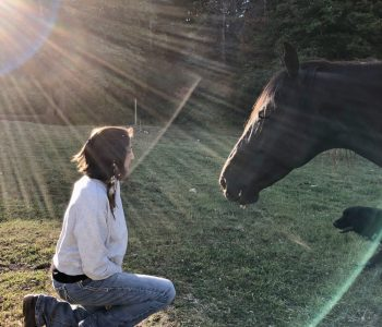 Telepathy Versus Body Language Communication with Horses