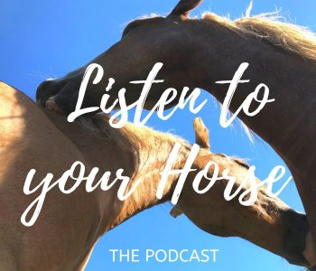 LTYH Podcast: Horse Journeys and an Exploration of Riding