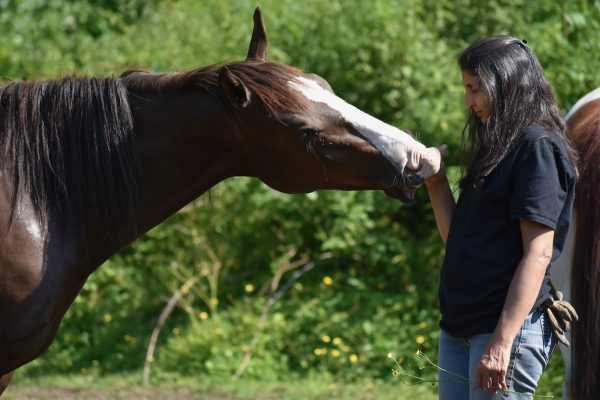 Understanding the Spiritual Nature of Horse-Human Relationship