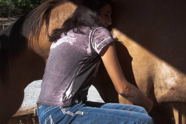 Horses Help Heal Generational Lines of Dysfunction
