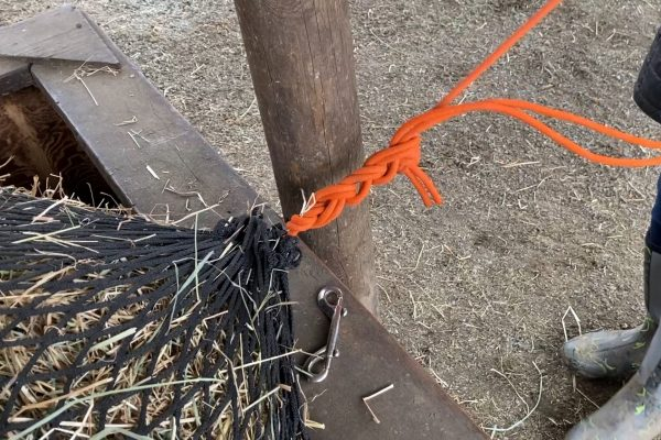 How to Tie a Slipknot on a Haynet