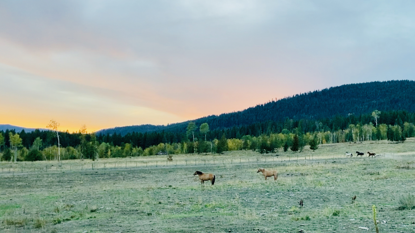 Sunset at the Singing Horse Ranch